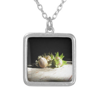 Hazelnuts on the table illuminated by the sunshine silver plated necklace