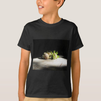Hazelnuts on the table illuminated by the sunshine T-Shirt