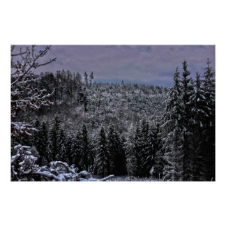 hdr snow bacon LED forrest Poster