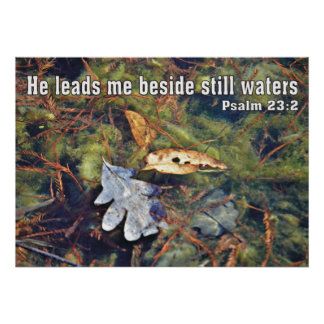 He leads me beside still waters poster