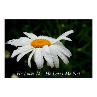 He Loves Me, He Loves Me Not Poster