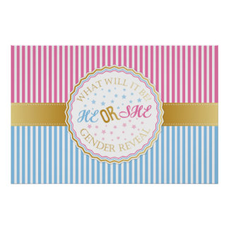 He or She Gender Reveal Poster