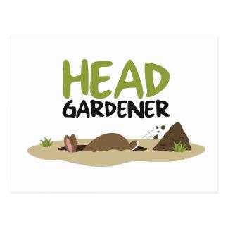 Head Gardener Illustration Postcard