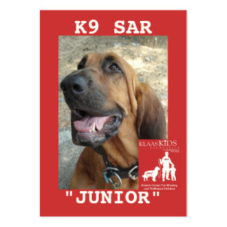 head-JUNIOR, KlassKids Search Team K9 Pack Of Chubby Business Cards
