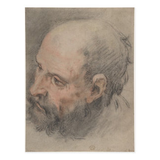 Head of a Bearded Man Looking Left Postcard