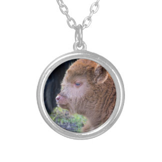 Head of Brown newborn scottish highlander calf Silver Plated Necklace