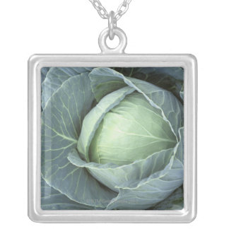 Head of cabbage with drops of water silver plated necklace
