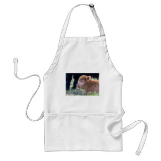 Head of lying Brown newborn scottish highlander Standard Apron