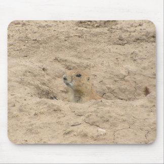 Head Out Of Burrow Mouse Pad