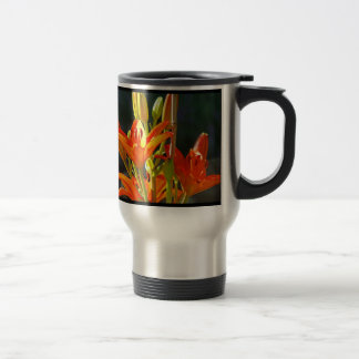 Healing coffee mug Nature Heals Gardens Inspires