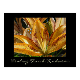 Healing Touch Kindness art prints Orange Lily Posters