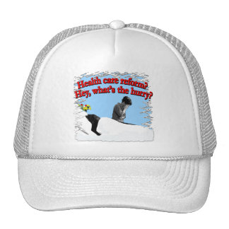 Health Care Reform What's the Hurry? Hat