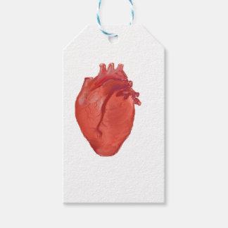 Heart Anatomy design Gift Tags