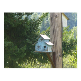 Heart birdhouse postcard