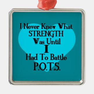 Heart/I Never Knew...I...P.O.T.S. Metal Ornament