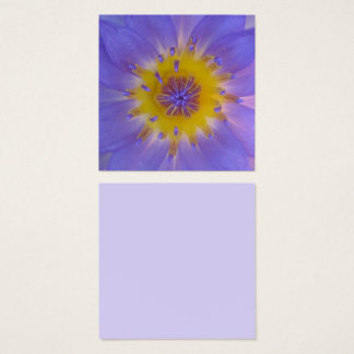 Heart of a waterlily macro photography square business card
