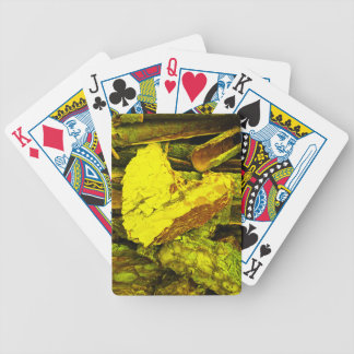 heart of gold bicycle playing cards