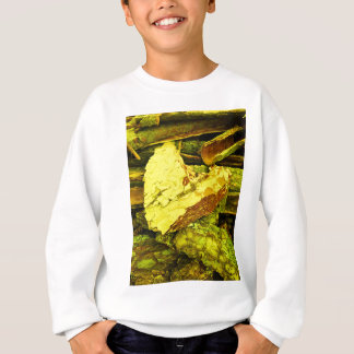 heart of gold sweatshirt