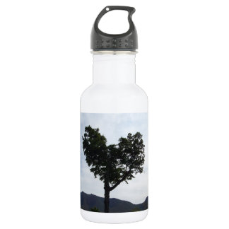 Heart of New Hampshire 532 Ml Water Bottle