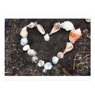 heart of sea shells postcard