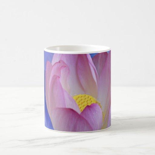 Heart to heart lotus flower coffee mugs