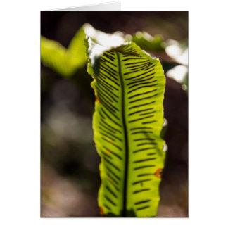 Heart Tongue Leaf Blank Greeting Card