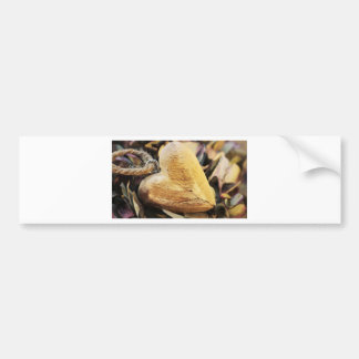 Heart Wooden Heart Hydrangea Flower Wood Love Bumper Sticker