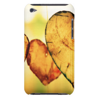 Hearts For You iPod Touch Case