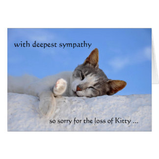 Heaven Sympathy Cat Template Greeting Card