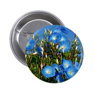 Heavenly Blue Morning Glory Flowers Pinback Button
