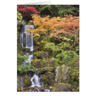 Heavenly Falls and autumn colors Card
