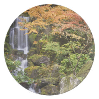 Heavenly Falls and autumn colors Party Plates
