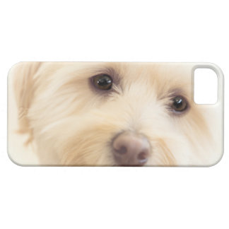 Heavenly Pup Barely There iPhone 5 Case
