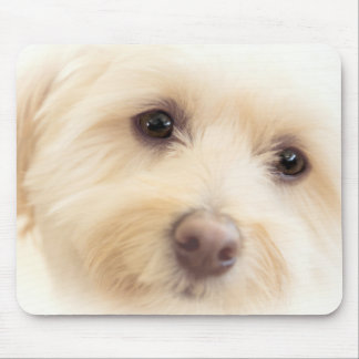 Heavenly Pup Mouse Pad