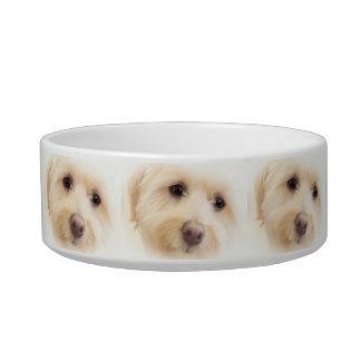 Heavenly Pup Pet Bowl