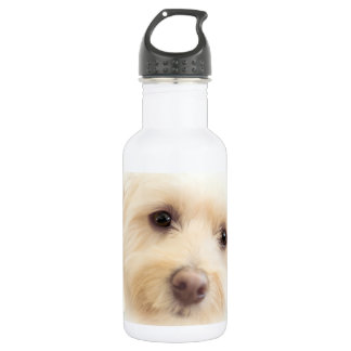 Heavenly Pup Water Bottle 532 Ml Water Bottle