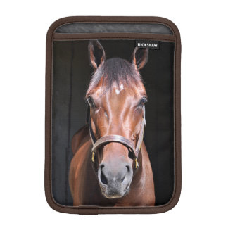 Heavenly View-Filly Sleeve For iPad Mini