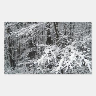 Heavy Frost on Branches Rectangular Sticker