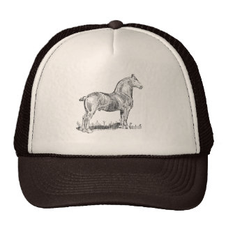 heavy horse cap