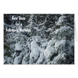 Heavy Snow on Pine Trees Card