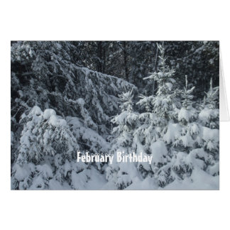 Heavy Snow on Pine trees Card