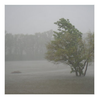 Heavy Windy Storm over a already Flooded Lake Photo Print