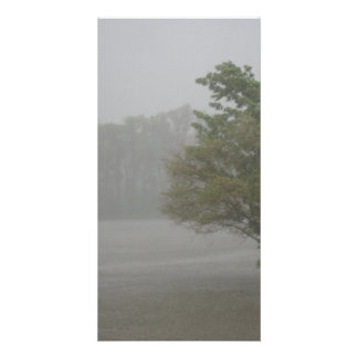 Heavy Windy Storm over a already Flooded Lake Photo Card Template