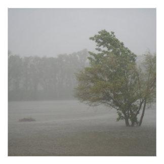 Heavy Windy Storm over a already Flooded Lake Photo Art