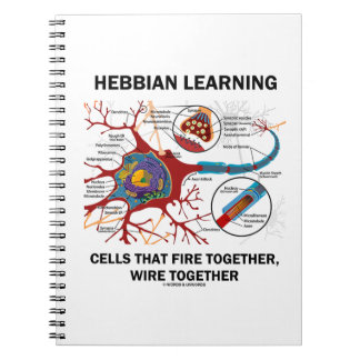 Hebbian Learning Cells That Fire Together Wire Notebook