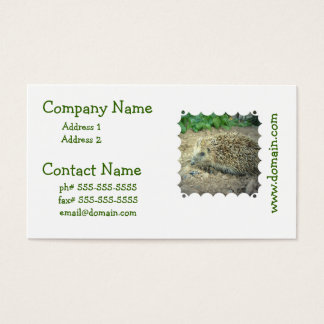 Hedgehog Care Business Cards