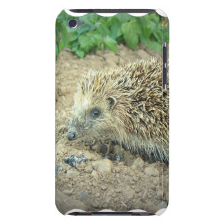 Hedgehog Care  iTouch Case Barely There iPod Cases