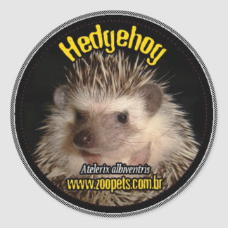 hedgehog classic round sticker