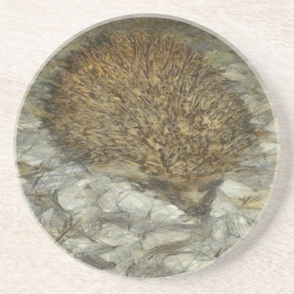 Hedgehog Coaster
