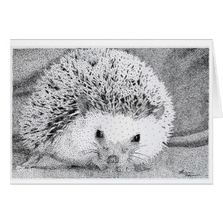 Hedgehog Drawing Greeting Cards
